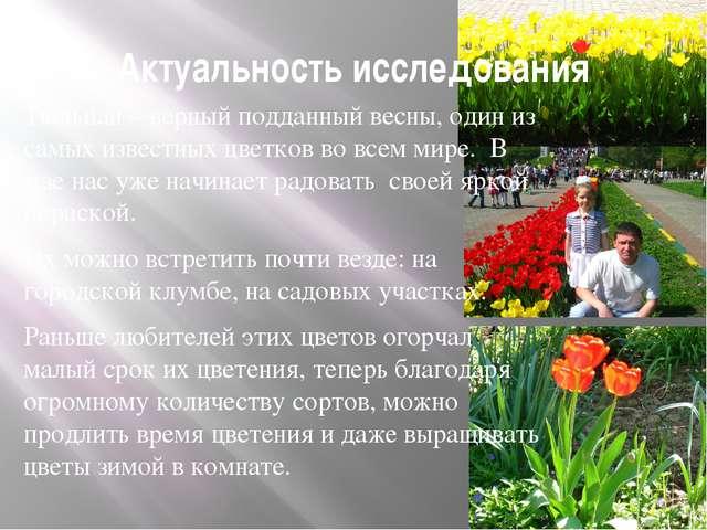 Актуальность исследования Тюльпан – верный подданный весны, один из самых изв...