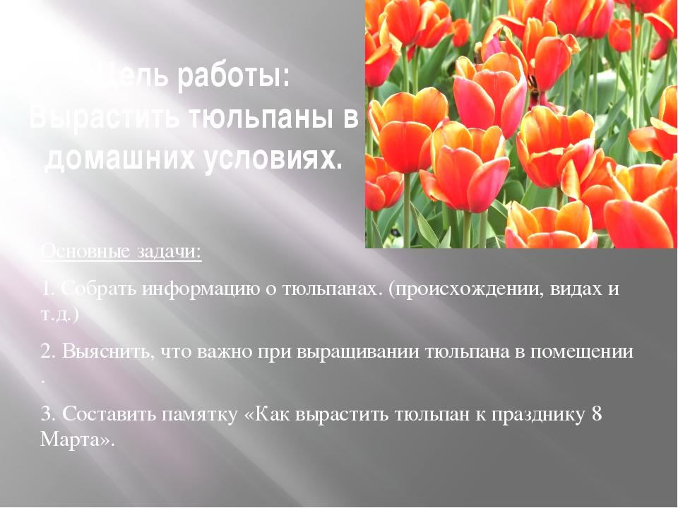Цель работы: Вырастить тюльпаны в домашних условиях. Основные задачи: 1. Собр...