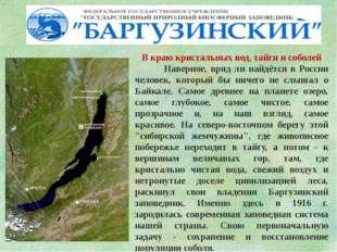 В краю кристальных вод, тайги и соболей Наверное, вряд ли найдётся в России