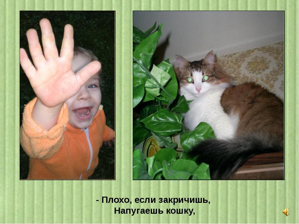 - Плохо, если закричишь, Напугаешь кошку,
