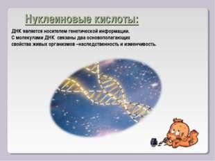 Нуклеиновые кислоты: ДНК является носителем генетической информации. С молеку