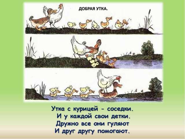 Утка с курицей - соседки. И у каждой свои детки. Дружно все они гуляют И дру...