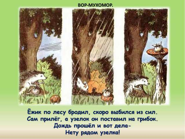 Ёжик по лесу бродил, скоро выбился из сил. Сам прилёг, а узелок он поставил...