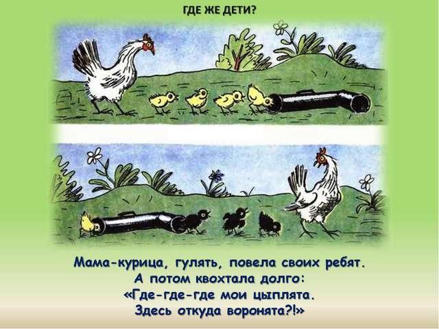 Мама-курица, гулять, повела своих ребят. А потом квохтала долго: «Где-где-где...
