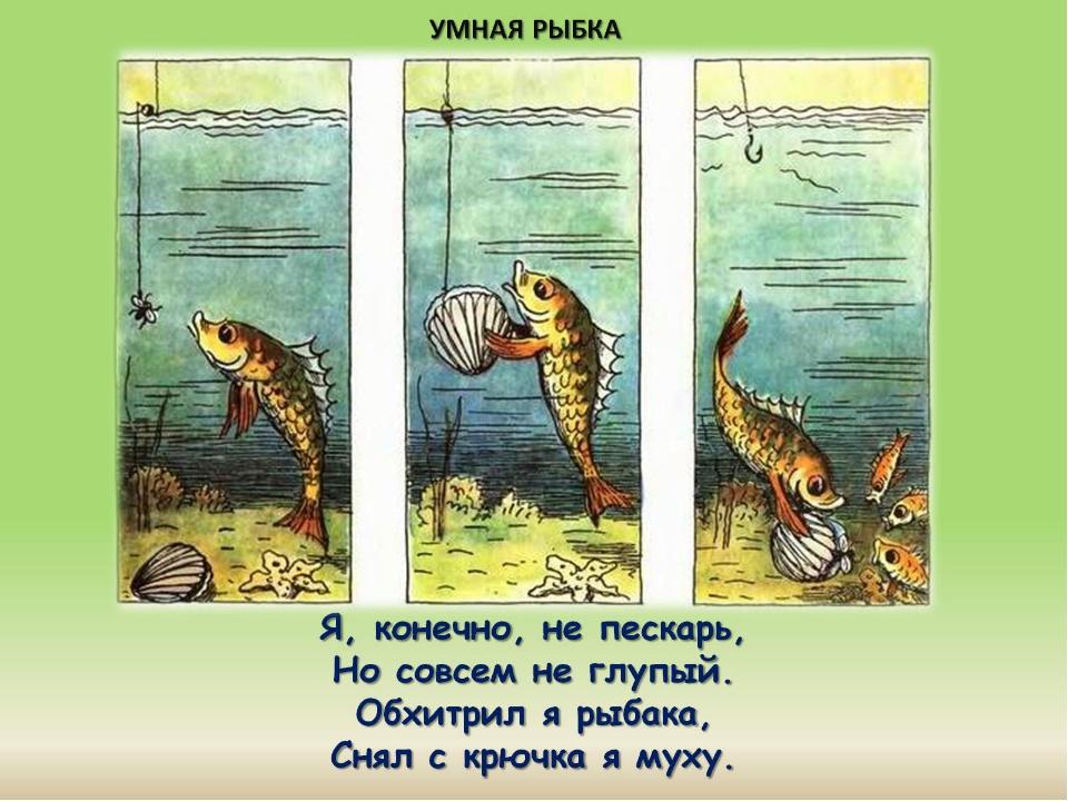 Я, конечно, не пескарь, Но совсем не глупый. Обхитрил я рыбака, Снял с крючк...