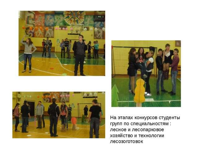 На этапах конкурсов студенты групп по специальностям : лесное и лесопарковое...
