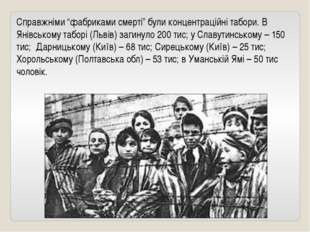 """Справжніми """"фабриками смерті"""" були концентраційні табори. В Янівському таборі"""