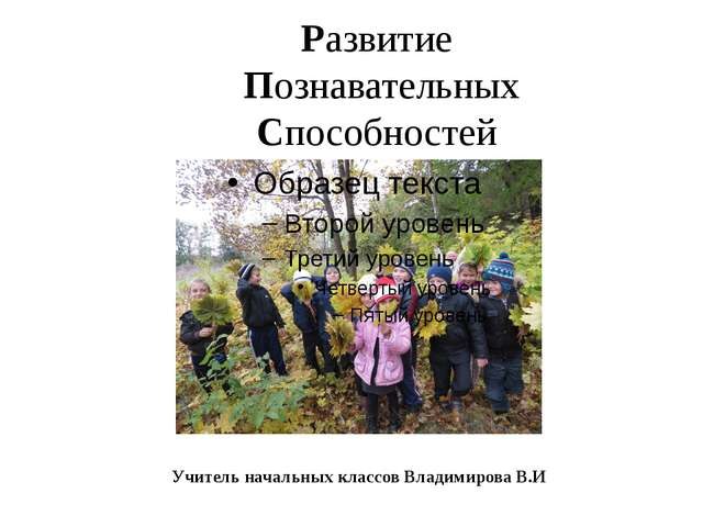 Развитие Познавательных Способностей Учитель начальных классов Владимирова В.И