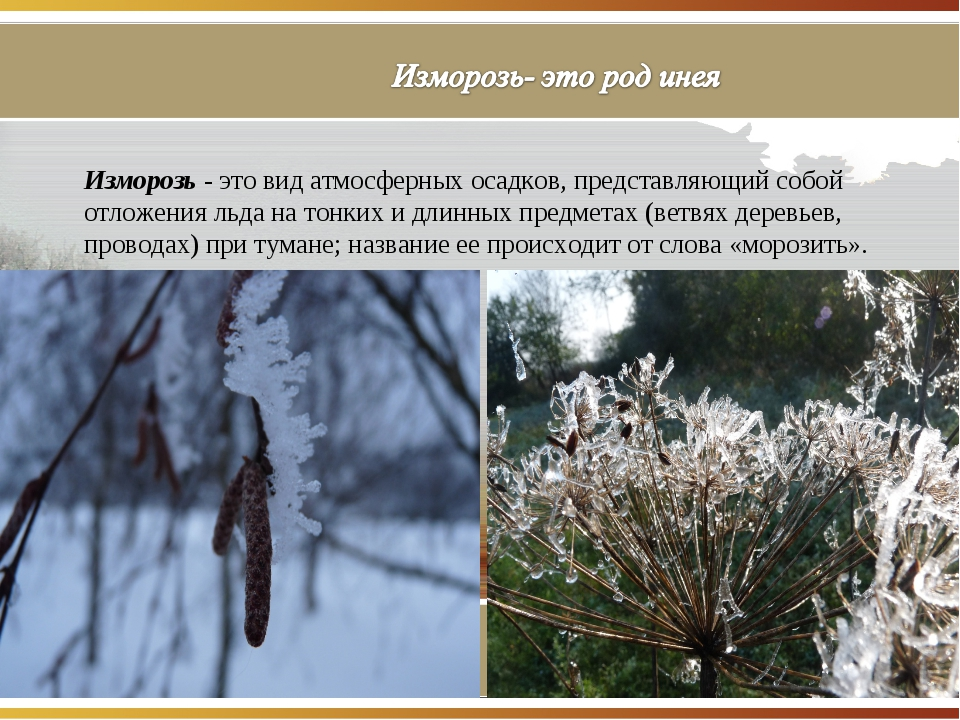Изморозь - это вид атмосферных осадков, представляющий собой отложения льда н...