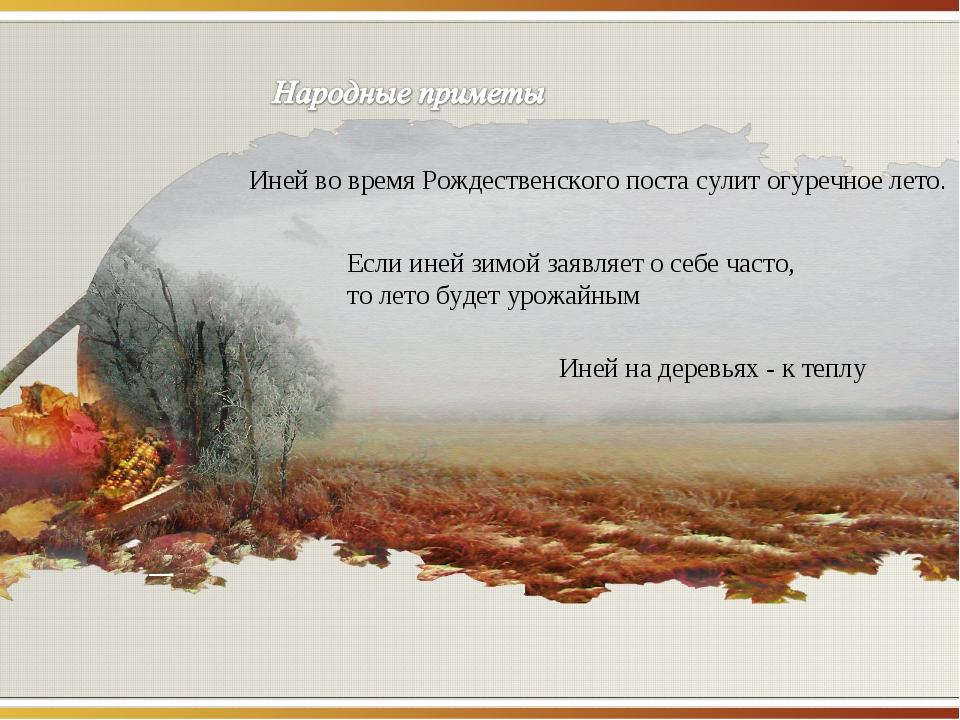 Иней во время Рождественского поста сулит огуречное лето. Если иней зимой зая...