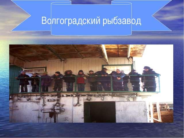 Волгоградский рыбзавод
