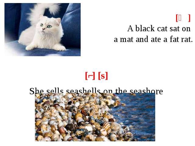 [ӕ] A black cat sat on a mat and ate a fat rat. [ʃ] [s] She sells seashell...