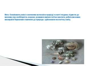 Мета: Ознайомити учнів із значенням молюсків в природі та житті людини; підв