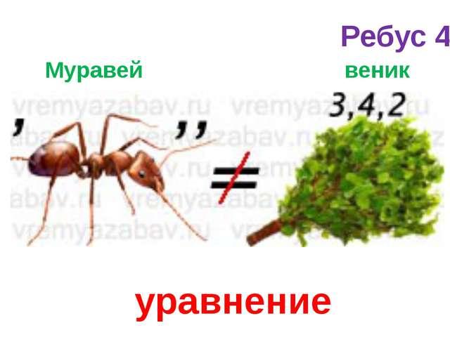 Муравей веник уравнение Ребус 4