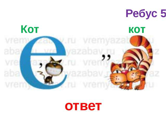 Кот кот ответ Ребус 5