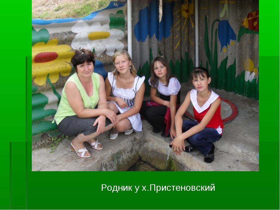 Родник у х.Пристеновский