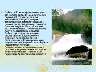Сейчас в России функционируют 101 заповедник, 40 национальных парков, 69 госу
