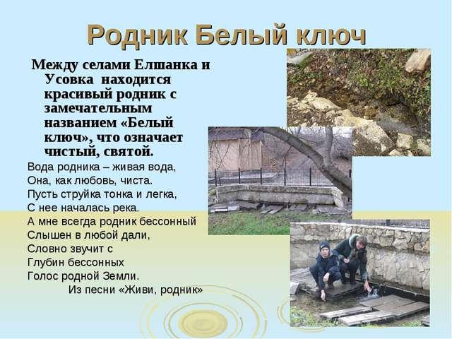 Родник Белый ключ Между селами Елшанка и Усовка находится красивый родник с з...