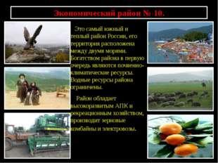 Экономический район № 10. Это самый южный и теплый район России, его территор