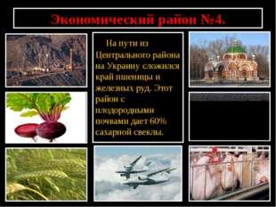 Экономический район №4. На пути из Центрального района на Украину сложился кр