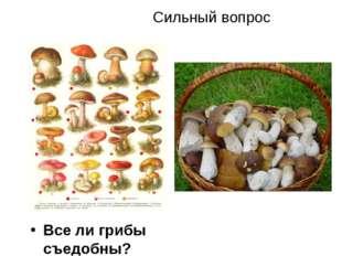 Сильный вопрос Все ли грибы съедобны? *