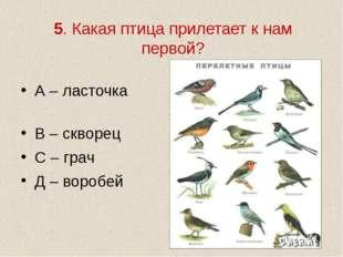 5. Какая птица прилетает к нам первой? А – ласточка В – скворец С – грач Д –