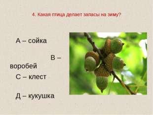 4. Какая птица делает запасы на зиму?   А – сойка В – воробей  С – клест