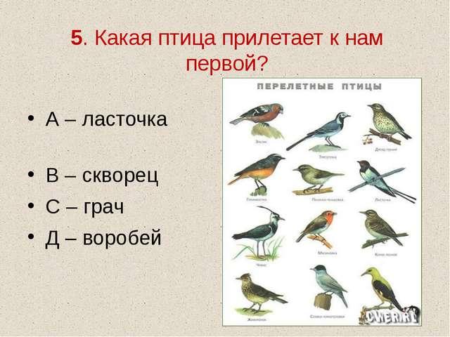 5. Какая птица прилетает к нам первой? А – ласточка В – скворец С – грач Д –...