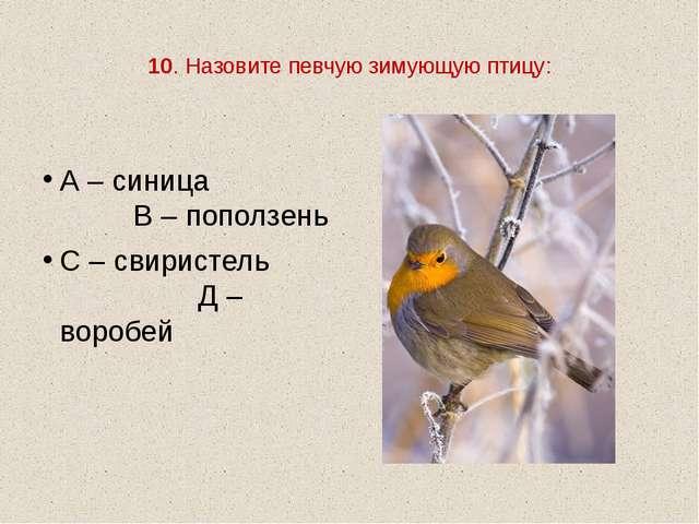 10. Назовите певчую зимующую птицу: А – синица В – поползень С – свиристель...