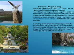 Кавказские Минеральные воды Кавказские Минеральные Воды — самый мощный курор