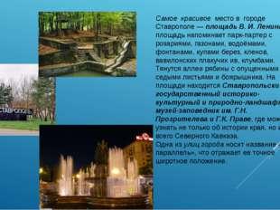 Самое красивое место в городе Ставрополе —площадь В. И. Ленина. Вся площадь