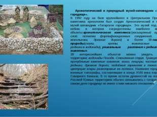Археологический и природный музей-заповедник «Татарское городище». В 1992 го