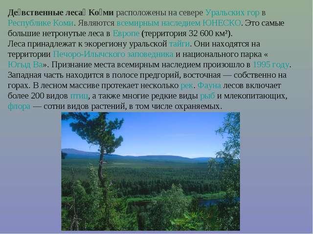 Де́вственные леса́ Ко́ми расположены на севере Уральских гор в Республике Ком...
