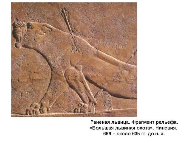 Раненая львица. Фрагмент рельефа. «Большая львиная охота». Ниневия. 669 – око...
