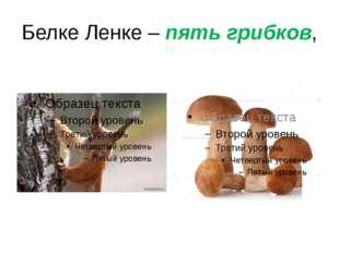 Белке Ленке – пять грибков,