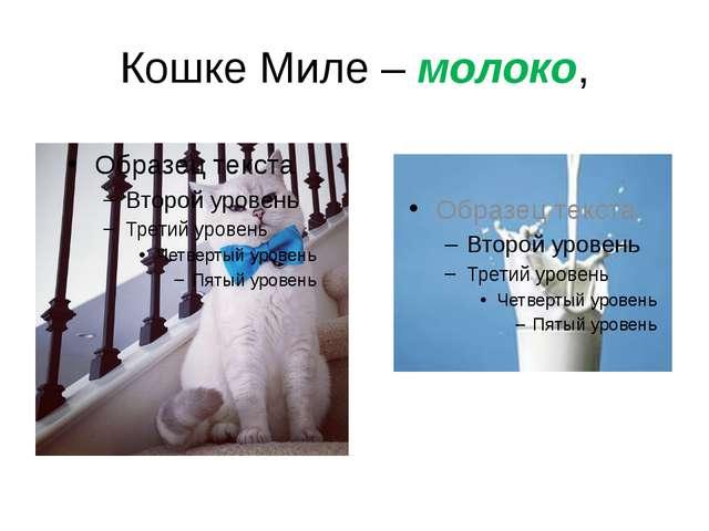 Кошке Миле – молоко,