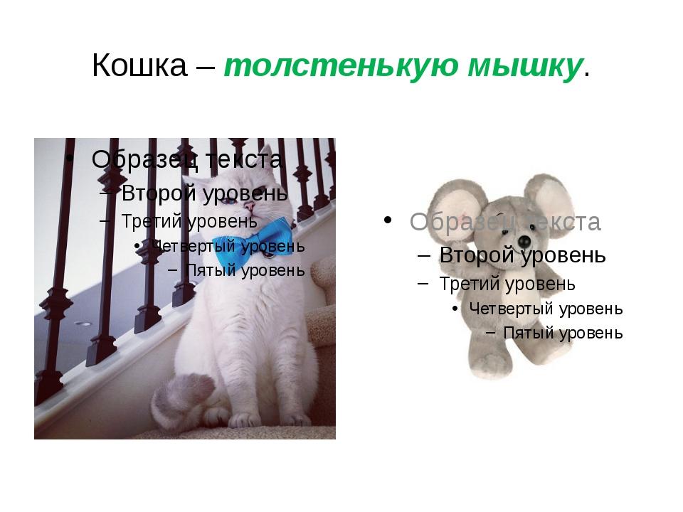 Кошка – толстенькую мышку.