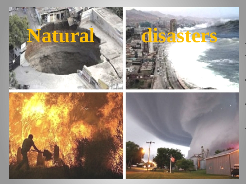natural disasters are not purely natural essay Dealing with a natural disaster essay sample china felt nature's fury the recent earthquake on may 12, 2008 that happened in the province of sichuan in china has claimed many lives and just like any great disaster, its effects have been very devastating for the people especially for those that had their friends and relatives die on them.