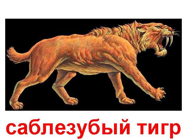 hello_html_2cafa2e.jpg