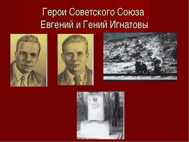 Герои Советского Союза Евгений и Гений Игнатовы