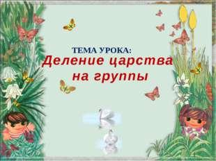 Деление царства на группы ТЕМА УРОКА: