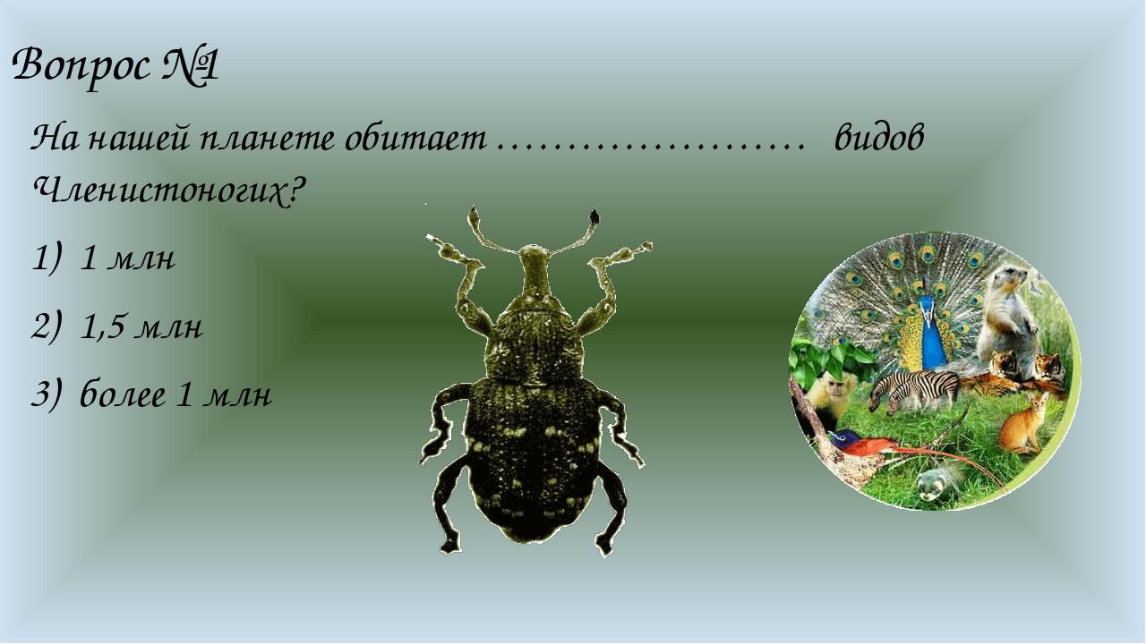 Вопрос №1 На нашей планете обитает …………………. видов Членистоногих? 1 млн 1,5 мл...