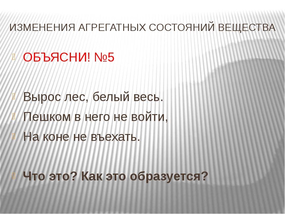 ИЗМЕНЕНИЯ АГРЕГАТНЫХ СОСТОЯНИЙ ВЕЩЕСТВА ОБЪЯСНИ! №5 Вырос лес, белый весь. Пе...