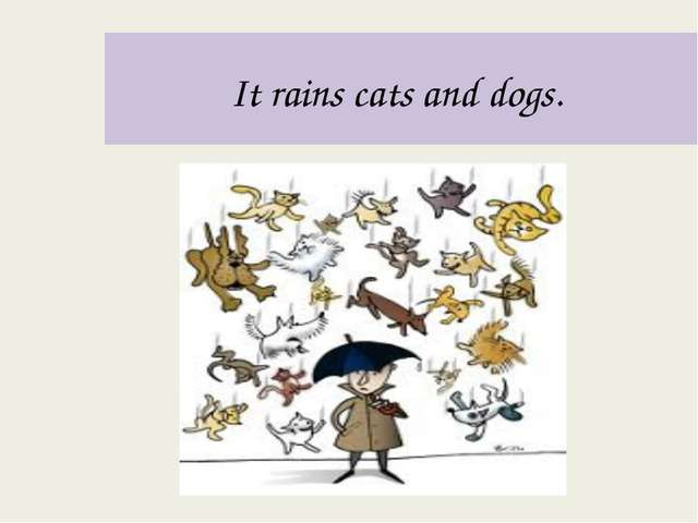 It rains cats and dogs.