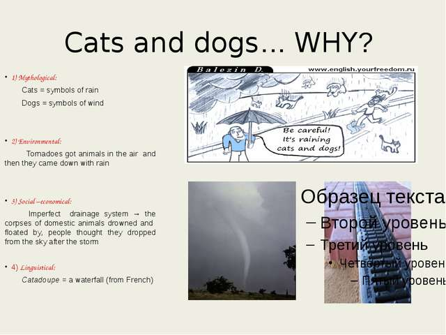 Cats and dogs… WHY? 1) Mythological: Cats = symbols of rain Dogs = symbols of...