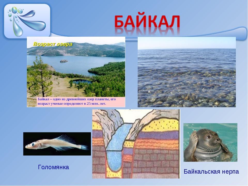 картинки внутренние воды евразии
