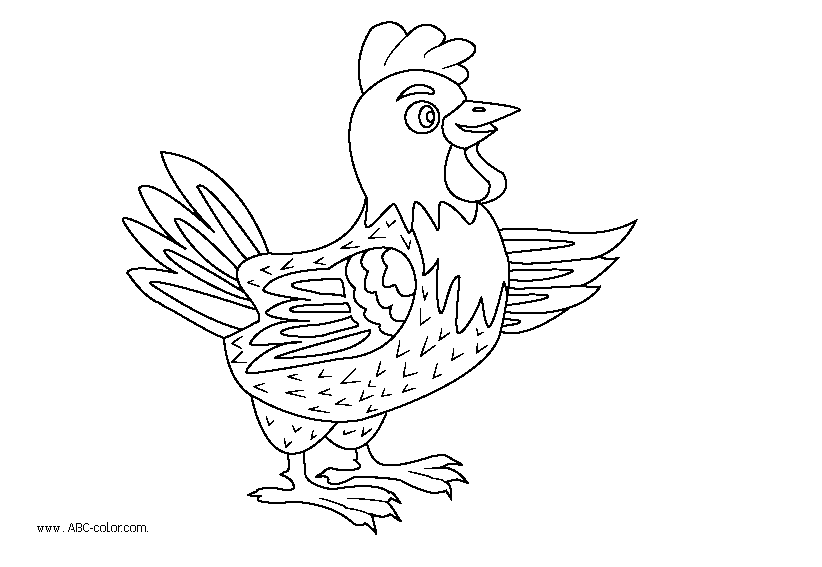 http://www.abc-color.com/image/coloring/chickens/001/cock/cock-raster-coloring.png
