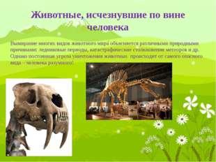 Стеллерова (морская) корова названа в честь русского зоолога Стеллера, которы