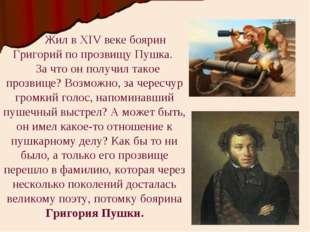 Жил в XIV веке боярин Григорий по прозвищу Пушка. За что он получил такое пр