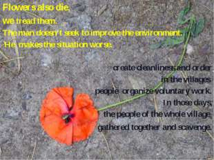 Flowers also die, we tread them. The man doesn't seek to improve the environm